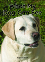 What My Dog Can See