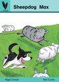Sheepdog Max
