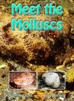 Meet the Molluscs